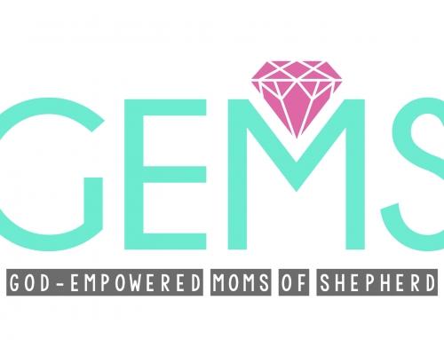 GEMS Study Group